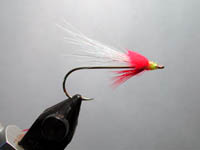 RV Shad with red poly yarn head